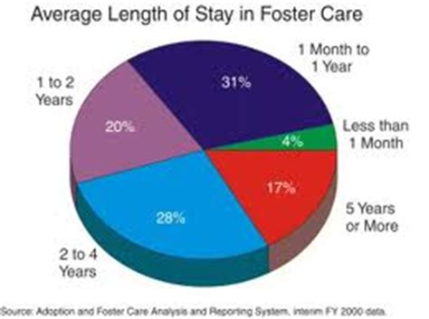 Foster care research paper conclusion